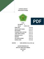 Laporan Fitokimia Lengkap-1