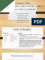kelompok 4 (ordo solanales,  rubiales,dll).pptx