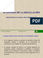CLASE 04 REGULACION Monopolio Natural Multiproducto