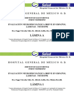 laminasneuropsi-170502004007