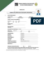 Anexo 09 Formato Curriculum Vitae