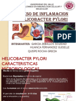 Proceso de Inflamacion en Helicobacter Pylori.pptx Expo
