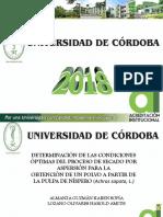 Presentacion_Institucional