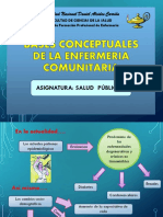 289282682 BASES CONCEPTUALES Enfermeria Comunitaria