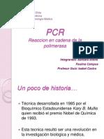 reaccionencadenadelapolimerasa-120716224704-phpapp02.pdf