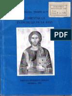 Sfantul Teofilact al Bulgariei - Talcuire la Evanghelia de la Ioan.pdf