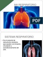 sistemarespiratorio-170108190828 (1)