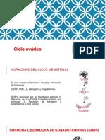 ciclo ovarico (1)