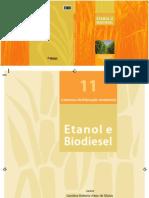 11-etanol-biodiesel-2012.pdf
