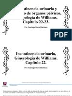 incontinenciaurinariayprolapsoderganosplvicos-171027045620