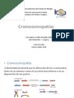 Cromosopatias