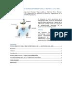 Metodologia Bim Grupal
