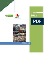 005 - D.T - Priyecto CCI Competitividad Cebolla