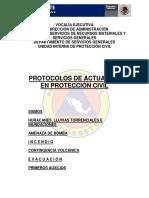 protocolos_de_actuacion_en_proteccion_civil1_0_1.pdf