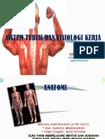 Sistem Tubuh Dan Fisiologi Kerja