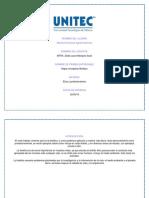 Plantilla Uno(2)