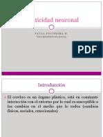 Clase 4 Plasticidad Neuronal y Sinaptica