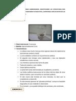 Informe p 2embriones