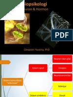 Biopsikologi_09_Neuron-hormon.pptx