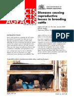 Cattle Reproductive Disease