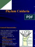 5-Cnidaria