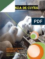 CRIANZA DE CUYES