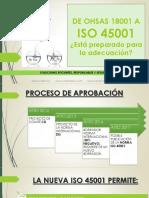 OHSASAISO.pdf