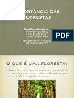 Geografia PDF