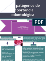 Virus Patógenos de Importancia Odontológica