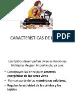 Características de Lípidos