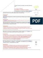 CELULA  y otros  preguntas con resp.doc