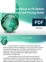 Introduction to Currency Option Product and Pricing