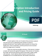 Introduction to FX Touch Option Pricing