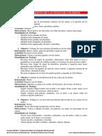 01_adiestramiento_de_las_yemas_de_los_dedos.pdf