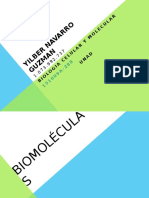 BIOLOGIA - YILBER