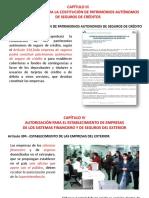 CAPÍTULO-III.pptx