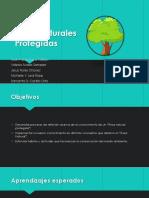 Areas Naturales Protegidas 1