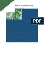 Cálculo de La Atenuación Por Vegetación en Un Radioenlace