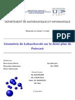 Géométrie de Lobaschovski sur le demi-plan de Poincaré