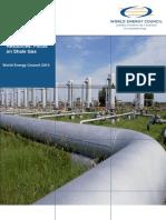 Shale Gas 2010 World Energy Council