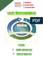 Ciclos Biogeoquimicos Monografia