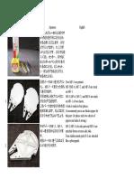 Halcón milenario_instrucciones de montaje.pdf