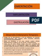 Segmentacion, Implantacion y Gastrulacion