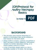Poultry Necropsy Basics