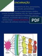 Curso de Médiuns Aula 20 - Reencarnação (Ribeiro)
