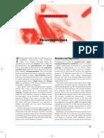 paramixoviruses.pdf