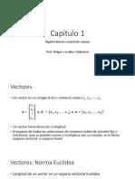 Capítulo 1 Repaso Algebra Matricial (1)