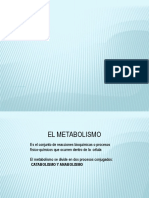 METABOLISMO 1.pptx