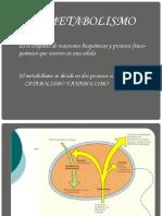 METABOLISMO 2.pptx