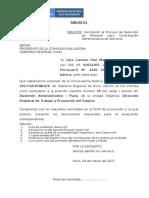 ANEXO-PROCESO CAS 002-2017-CECAS.doc